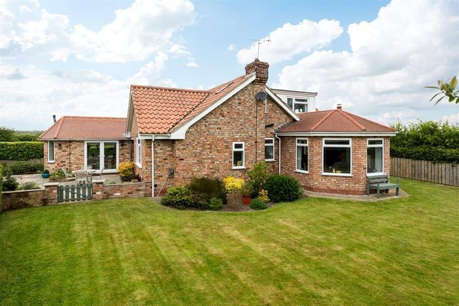 Thumbnail Detached house for sale in Masinda, Haxby