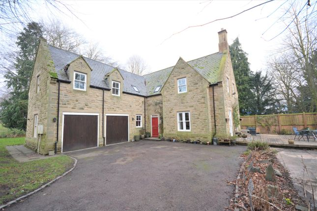 Thumbnail Detached house for sale in Leazes Lane, Wolsingham, Bishop Auckland