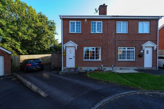 Thumbnail Semi-detached house for sale in Beaufort Park, Off Beechill Road, Belfast