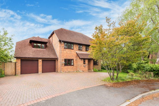 Thumbnail Detached house for sale in Old Farm Copse, West Wellow, Romsey, Hampshire