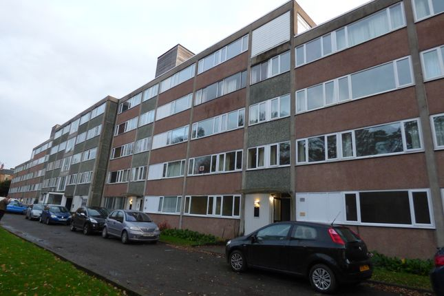 2 bed flat to rent in Berwick Road, Shrewsbury SY1