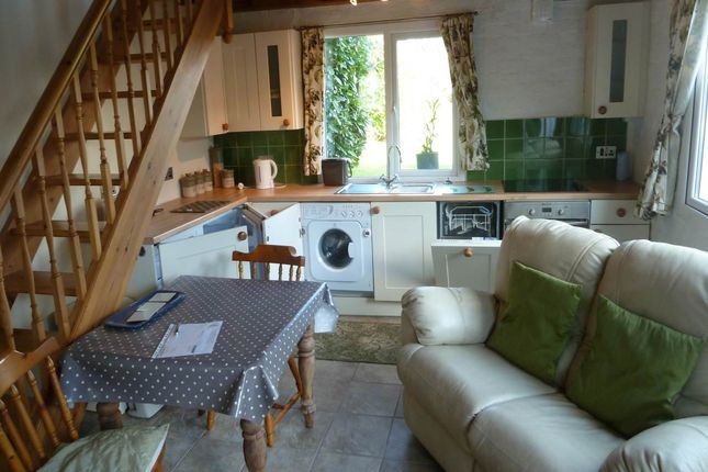 Thumbnail Property to rent in Springfield Road, Carmarthen