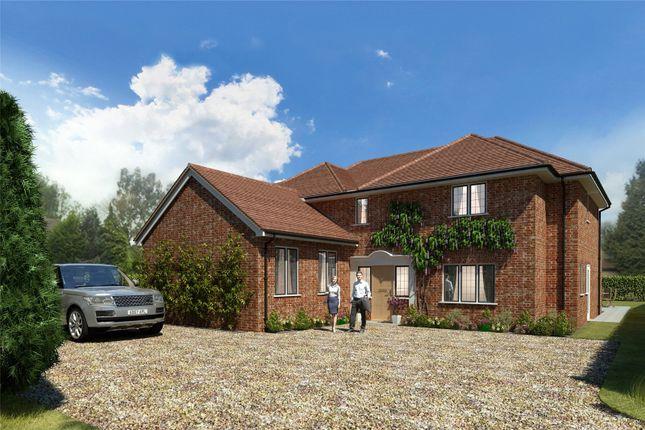 Thumbnail Property for sale in High Elms, Harpenden, Hertfordshire