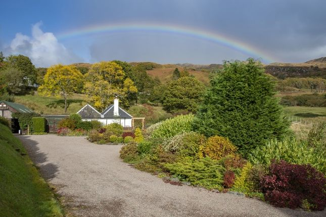 Thumbnail Cottage for sale in Glenborrodale, Acharacle