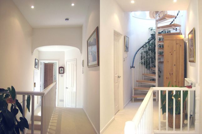 Thumbnail Maisonette to rent in Waverley Road, Exmouth