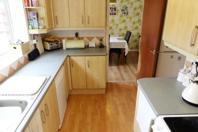 Thumbnail Property to rent in Clifton Road, Paignton