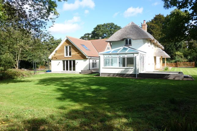 Thumbnail Detached house to rent in Little Somborne, Stockbridge