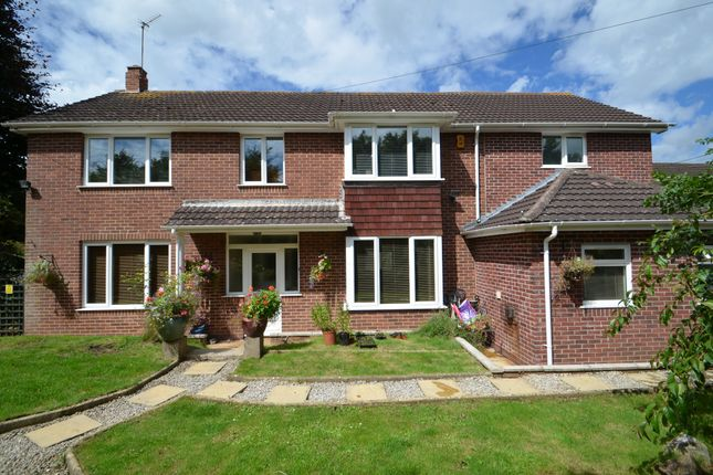 Thumbnail Detached house for sale in Exeter Road, Dawlish