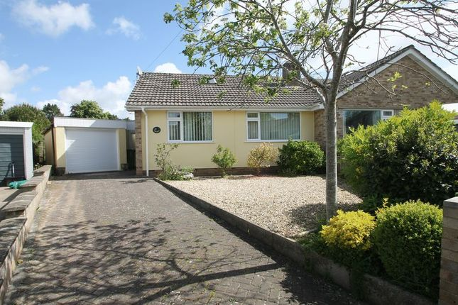 Thumbnail Semi-detached bungalow to rent in St. Cuthbert Avenue, Wells