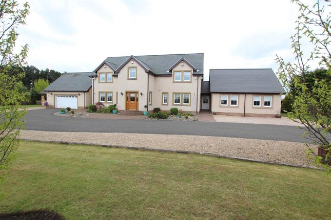 Thumbnail Property for sale in Lanark