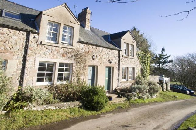 Thumbnail Cottage to rent in Coldingham, Eyemouth