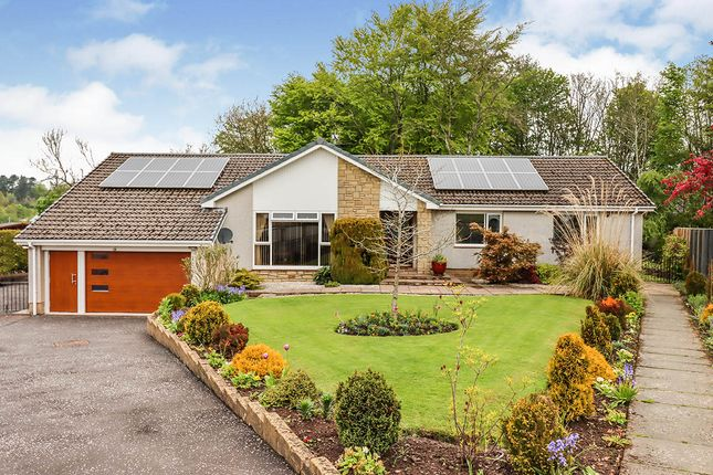 Thumbnail Bungalow for sale in Rosemount Crescent, Glenrothes, Fife