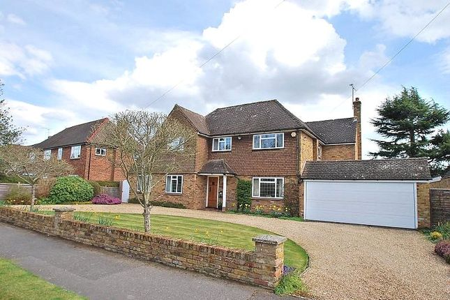 Thumbnail Detached house to rent in Hogback Wood Road, Beaconsfield, Buckinghamshire