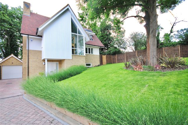 Thumbnail Detached house for sale in Chignal Road, Chelmsford, Essex