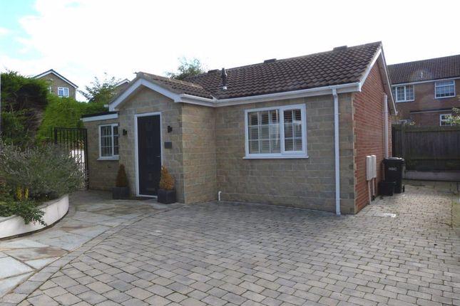 2 bed bungalow to rent in Westville Oval, Harrogate HG1