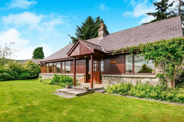 Thumbnail Bungalow for sale in Alness