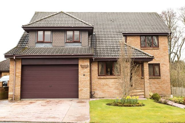 Thumbnail Detached house for sale in Honeyman Crescent, Lanark