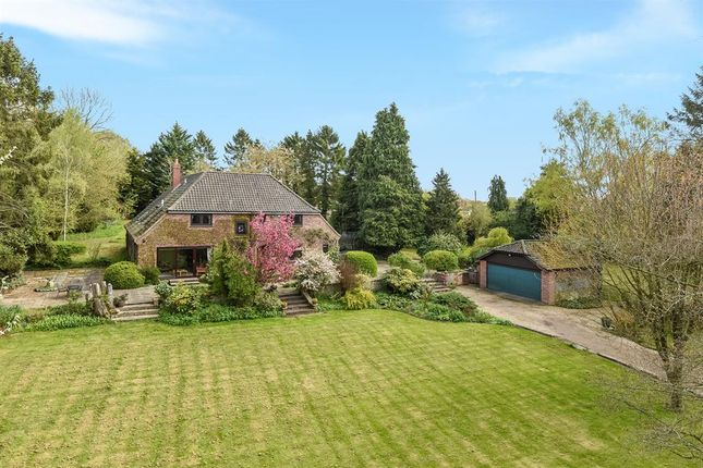 Thumbnail Detached house for sale in The Street, Flordon, Norwich