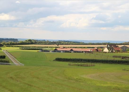 Thumbnail Detached house for sale in Six Mile Bottom Road, Newmarket, Cambridgeshire