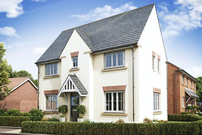 "Thumbnail Semi-detached house for sale in ""Morpeth"" at Priorswood, Taunton"