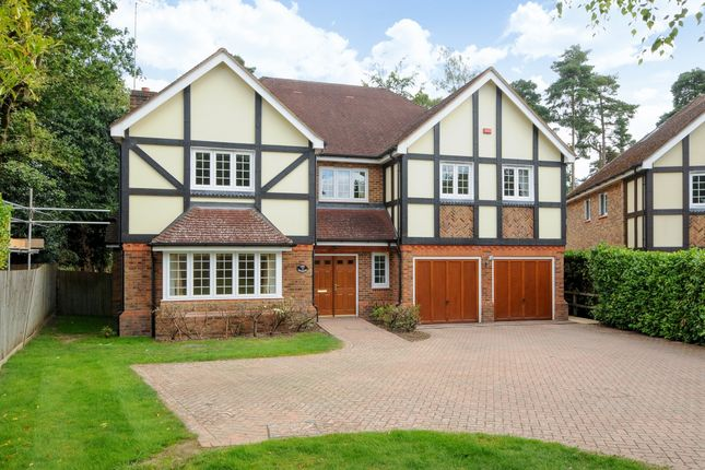 Thumbnail Detached house to rent in Monks Drive, Ascot