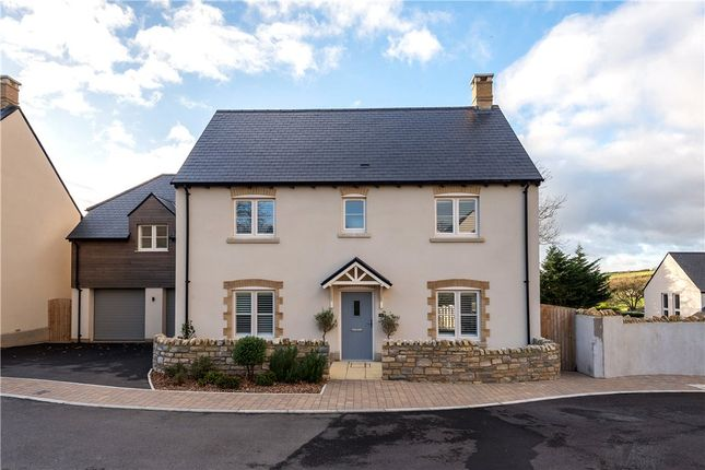 Thumbnail Detached house for sale in Lorton Park, Weymouth, Dorset