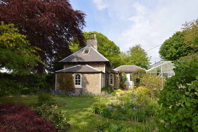 Thumbnail Cottage for sale in Coldingham, Eyemouth