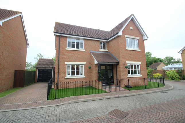 Thumbnail Detached house for sale in Nelson Road, Ashingdon, Rochford