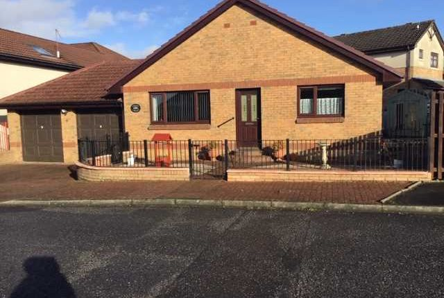 Thumbnail Bungalow for sale in Banchory Road, Wishaw