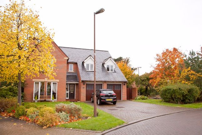 Thumbnail Detached house to rent in Newbattle Gardens, Eskbank, Midlothian