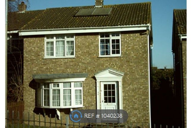 Thumbnail Semi-detached house to rent in Pickford Walk, Colchester