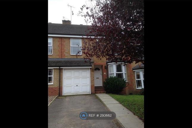 Thumbnail Terraced house to rent in Coates Hill Road, London