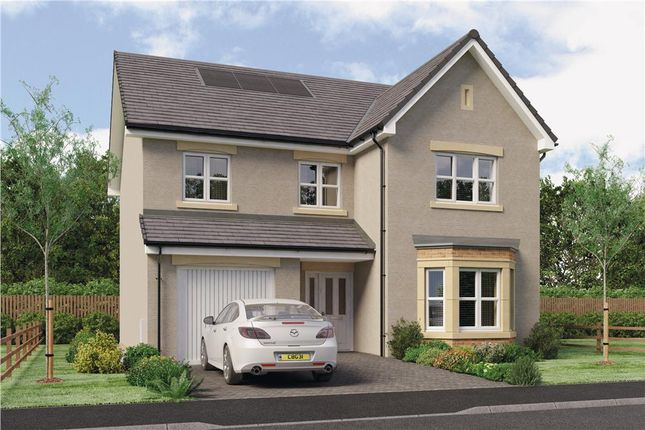 "Thumbnail Detached house for sale in ""Yeats"" at Red Deer Road, Cambuslang, Glasgow"