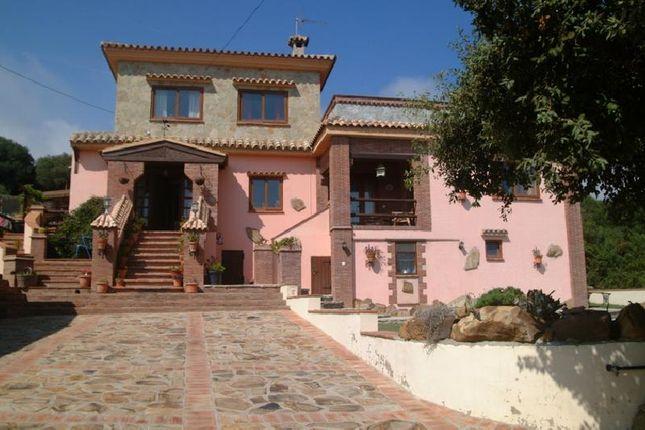 Properties For Sale In Tarifa C 225 Diz Andalusia Spain