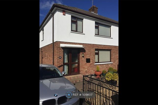 Thumbnail Semi-detached house to rent in Gilford Road, Craigavon