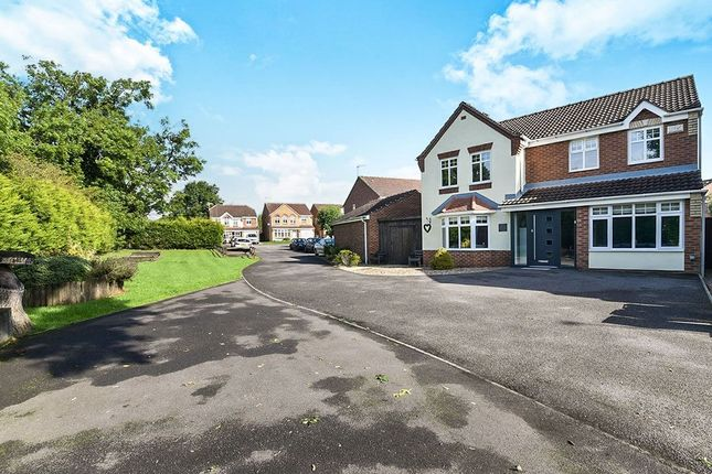 Thumbnail Detached house for sale in Buntingbank Close, South Normanton, Alfreton