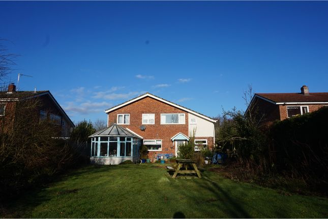 Thumbnail Detached house for sale in Kings Head Lane, Diss