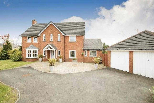 Thumbnail Property for sale in Wellview Lane, Murieston, Livingston