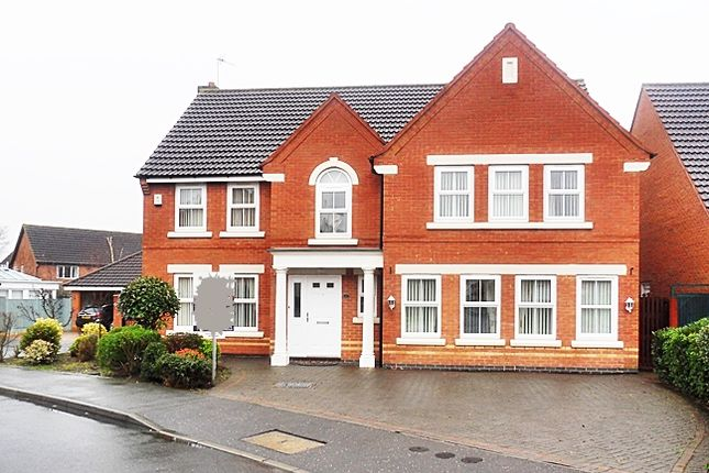 Thumbnail Detached house to rent in Nettleton Close, Littleover, Derby