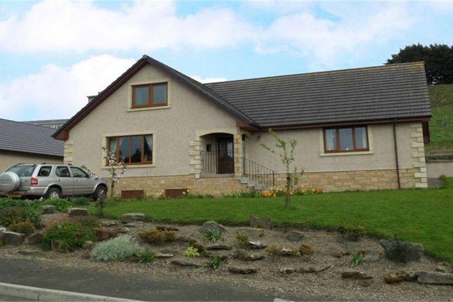 Thumbnail Detached house for sale in Longbaulk Road, Hawick, Scottish Borders