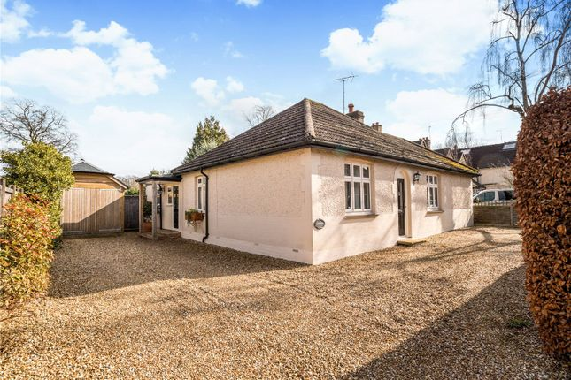 Thumbnail Detached bungalow for sale in Atbara Road, Church Crookham, Fleet