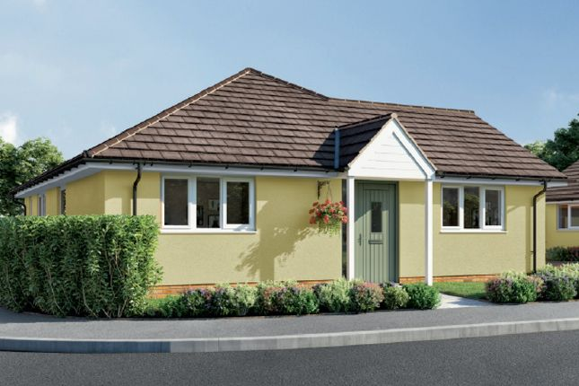 Thumbnail Detached bungalow for sale in Orchard Brooks, Williton, Taunton
