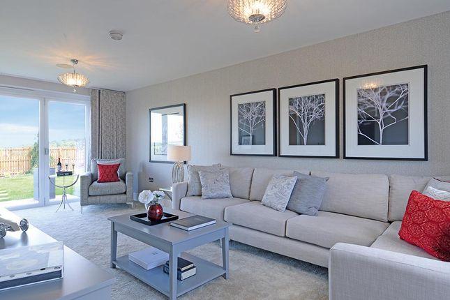 "Thumbnail Detached house for sale in ""The Danbury"" at Castlehill Crescent, Ferniegair, Hamilton"
