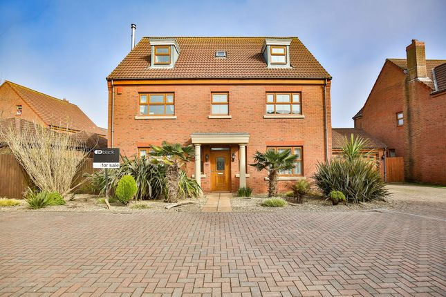 Thumbnail Detached house for sale in Sanderling Way, Porthcawl