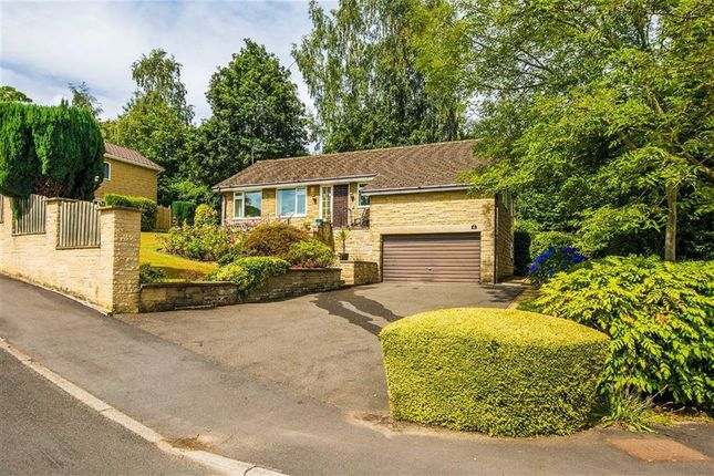 Thumbnail Bungalow for sale in 1A, Brincliffe Edge Close, Brincliffe