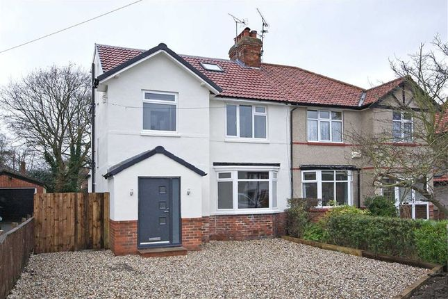 Thumbnail Semi-detached house to rent in St. Catherines Road, Harrogate, North Yorkshire