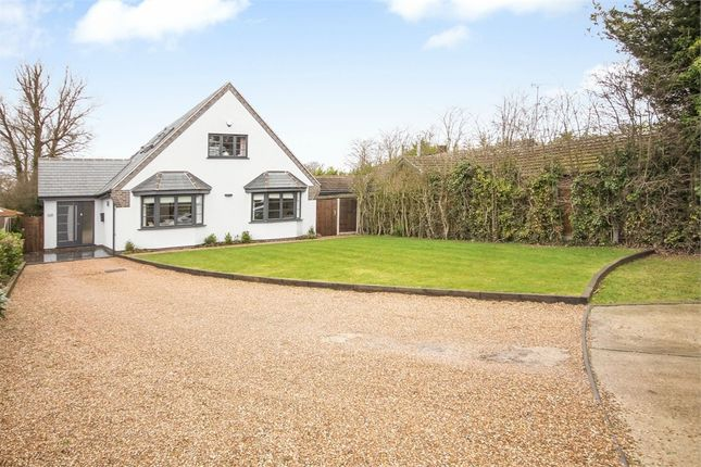 Thumbnail Detached house for sale in White Lodge Crescent, Thorpe-Le-Soken, Clacton-On-Sea