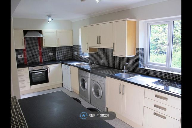 Thumbnail Terraced house to rent in Sale Hill, Sheffield