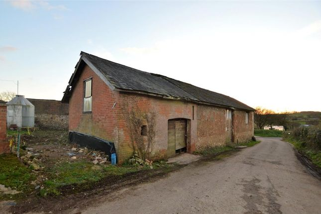 Thumbnail Semi-detached house for sale in Awliscombe, Honiton, Devon