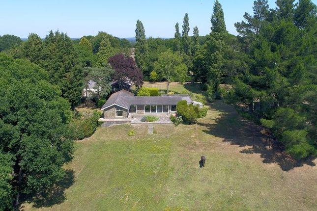 Thumbnail Detached bungalow for sale in Spear Hill, Ashington, Pulborough